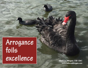 Arrogance Foils Excellence